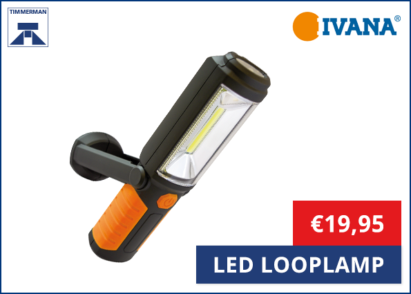 Ivana Led Looplamp